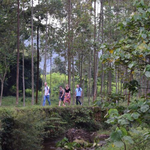 Promenade à la recherche du barrage hydroélectrique